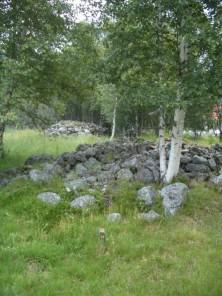 Steinfelder