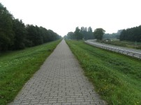 Deich Richtung Koserow