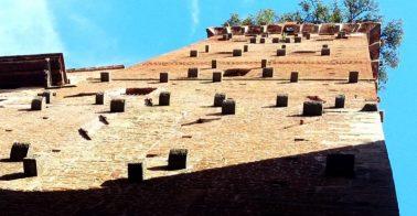 Torre Guinigi Wand