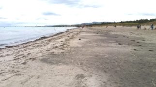 Strand Richtung Vada