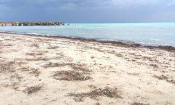 Strand nach einem Sturm