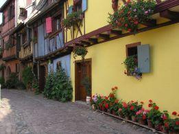Eguisheim_Blumen