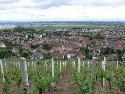 Blick auf Turckheim