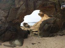 Der durchbohrte Felsen