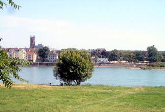 Köln 4355