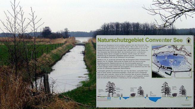 Boergerende Naturschutzgebiet Conventer See