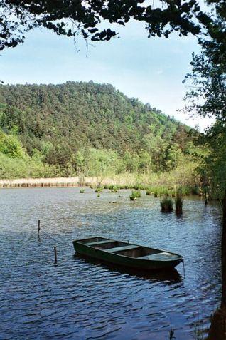 Erlenbach Seehof