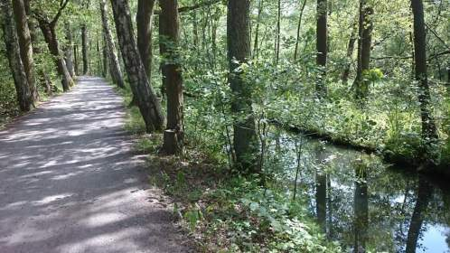 Lübbenau Gurkenradweg