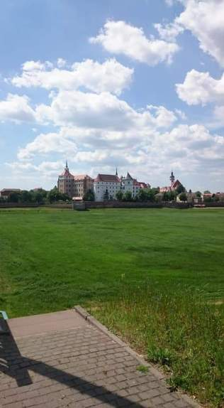 Torgau Schloss von der anderen Elbseite