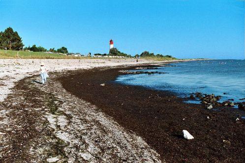 Pommerby Strand
