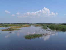 Naturschutzgebiet_Wallnau