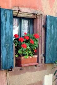 Riquewihr altes Fenster