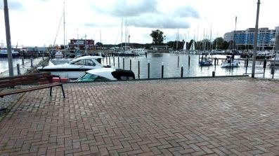 Damp am Hafenbecken