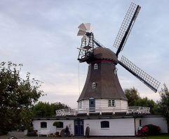 Friedrichskoog Mühle