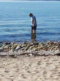 Waabs Strandtag im Wasser