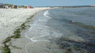 Strand in Kalifornien