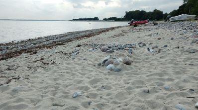 Strand vorm CP Langholz