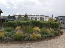 H C Andersen Haus 6