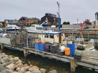 im Hafen Bogense7