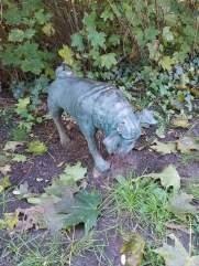 Waldmopspaare am Humboldthain (2)